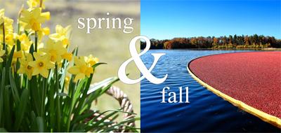 Linger Longer by the Sea Spring & Fall