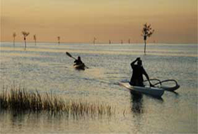 pic-home-kayaking