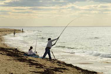 pic-capeattractions-fishing